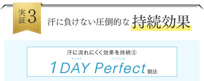 1DAY Perfect